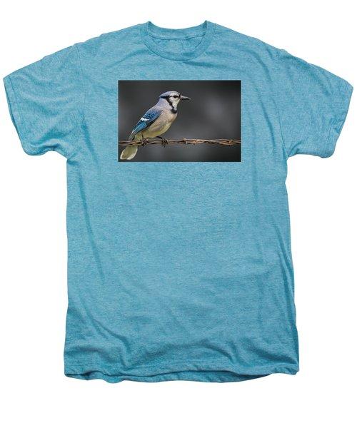 Bluejay Men's Premium T-Shirt