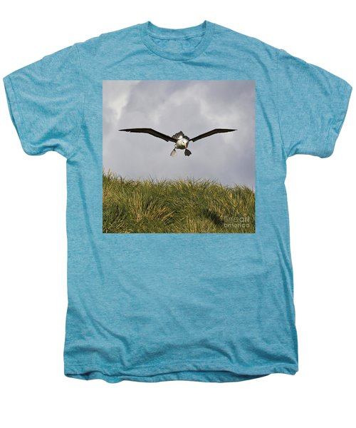 Black-browed Albatross Men's Premium T-Shirt by Jean-Louis Klein & Marie-Luce Hubert