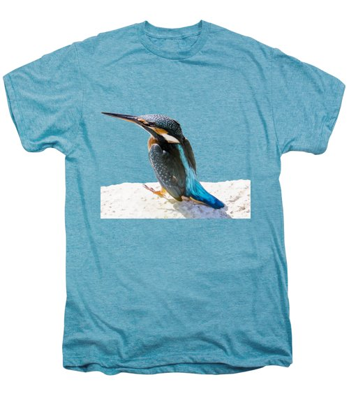 A Beautiful Kingfisher Bird Vector Men's Premium T-Shirt
