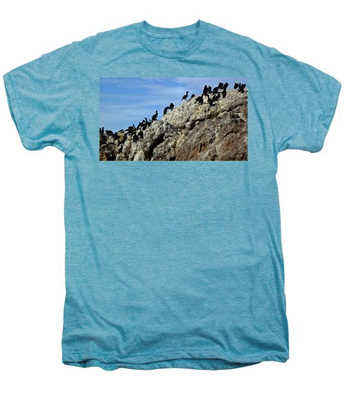 A Gulp Of Cormorants Men's Premium T-Shirt by Sandy Taylor