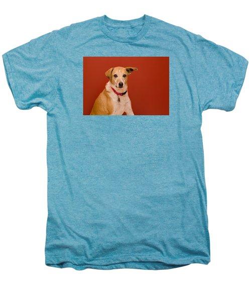 Abbie 1 Men's Premium T-Shirt