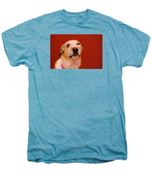 Abbie And A Milky Bone Men's Premium T-Shirt
