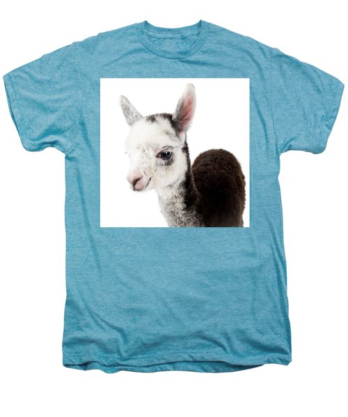 Adorable Baby Alpaca Cuteness Men's Premium T-Shirt by TC Morgan