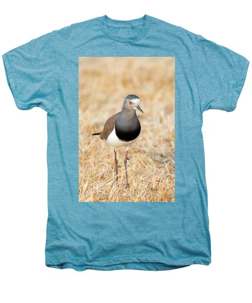 African Wattled Lapwing Vanellus Men's Premium T-Shirt by Panoramic Images