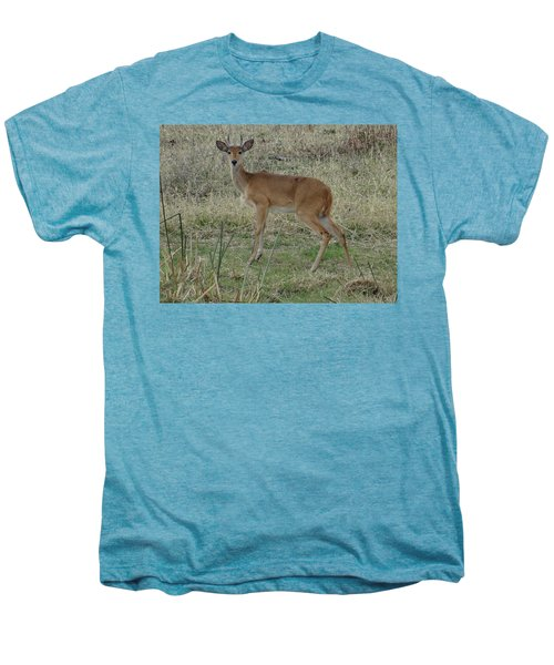 African Wildlife 1 Men's Premium T-Shirt