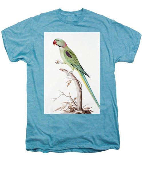 Alexandrine Parakeet Men's Premium T-Shirt by Nicolas Robert