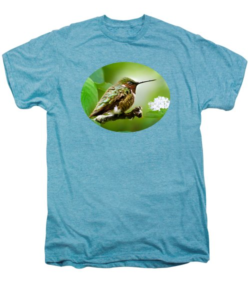Male Ruby-throated Hummingbird At Rest Men's Premium T-Shirt