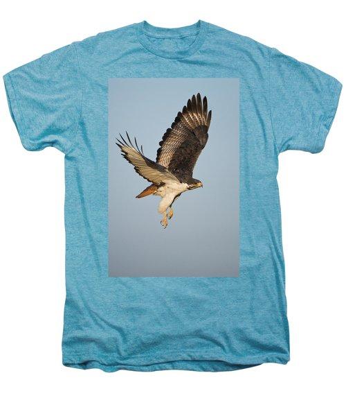 Augur Buzzard Buteo Augur Flying Men's Premium T-Shirt by Panoramic Images