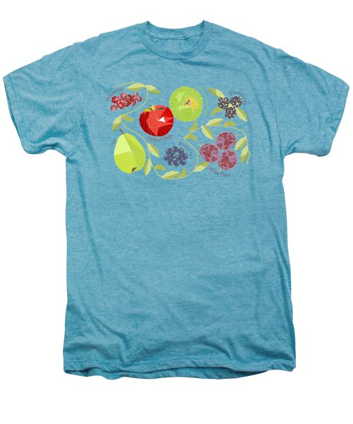 Autumn Fruit Geodesic Men's Premium T-Shirt