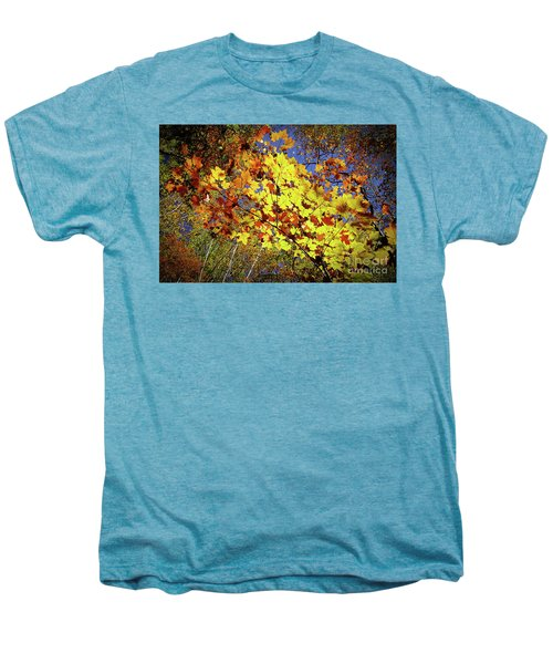 Autumn Light Men's Premium T-Shirt by Tatsuya Atarashi