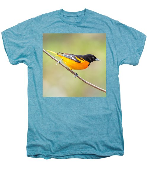 Baltimore Oriole Men's Premium T-Shirt by Paul Freidlund