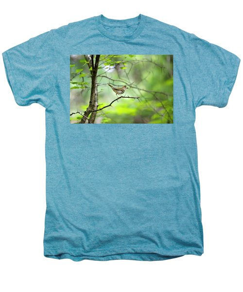 Beauty Of The Spring Forest Men's Premium T-Shirt