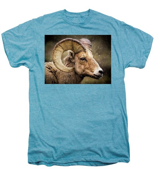 Bighorn Sheep In Winter Men's Premium T-Shirt