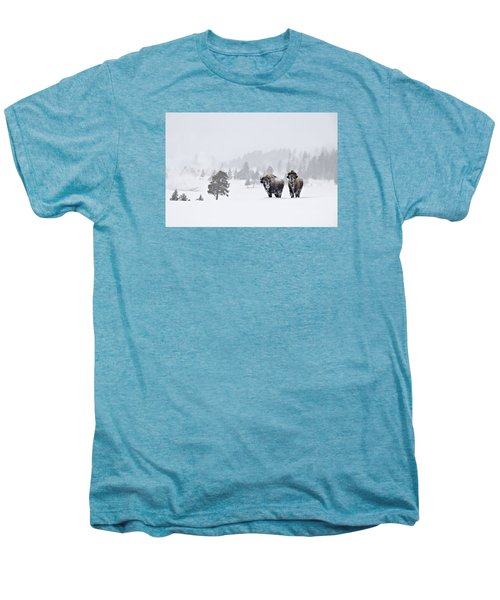 Bison In The Snow Men's Premium T-Shirt by Gary Lengyel