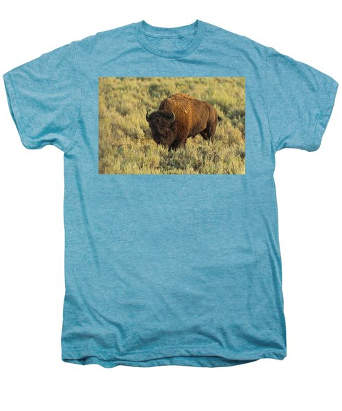 Bison Men's Premium T-Shirt by Sebastian Musial
