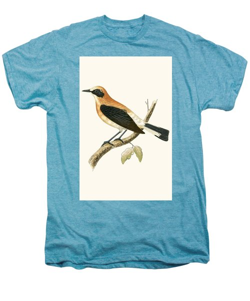 Black Eared Wheatear Men's Premium T-Shirt by English School