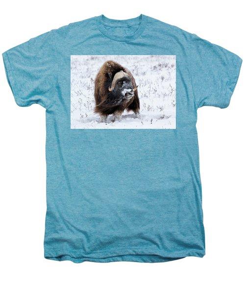Blowing In The Wind Men's Premium T-Shirt