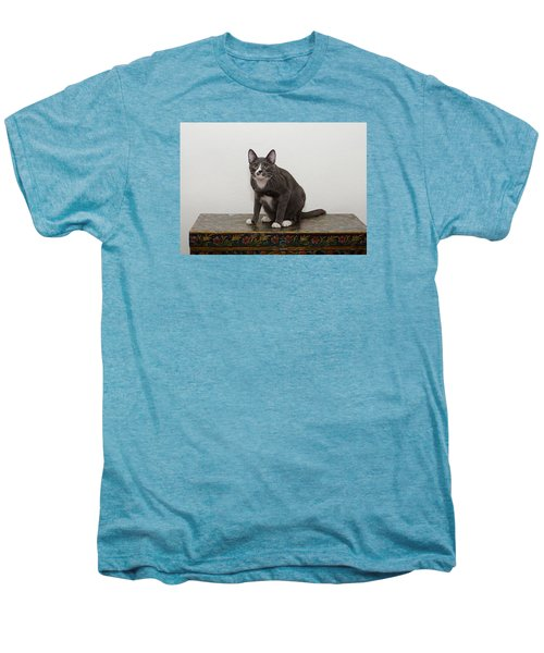 Blue 1 Men's Premium T-Shirt