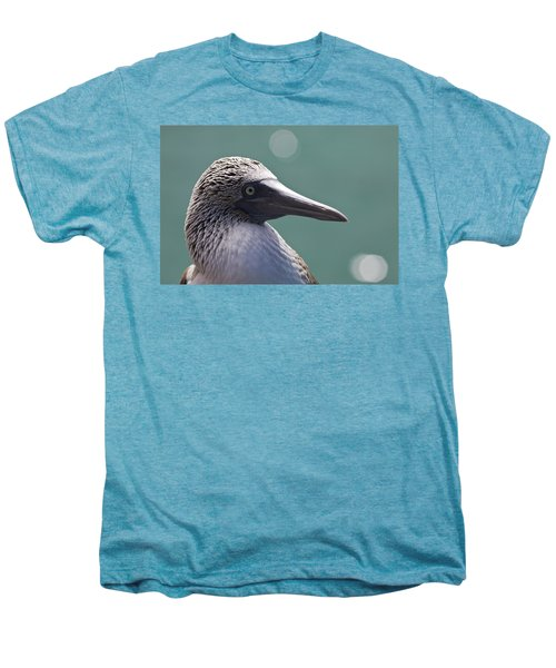 Blue Footed Booby II Men's Premium T-Shirt by Dave Fleetham