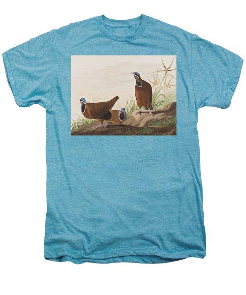 Blue Headed Pigeon Men's Premium T-Shirt