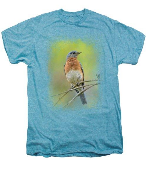 Bluebird On A Spring Day Men's Premium T-Shirt