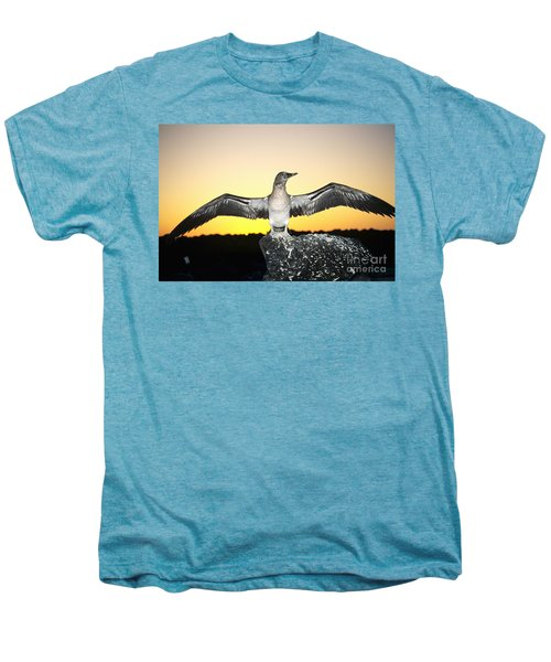 Booby At Sunset Men's Premium T-Shirt by Dave Fleetham - Printscapes