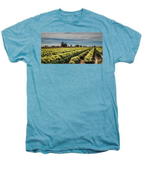 Broccoli Seed Men's Premium T-Shirt by Robert Bales