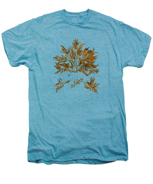 Men's Premium T-Shirt featuring the mixed media Brown Seaweed Marine Art Chylocladia Clavellosa by Christina Rollo