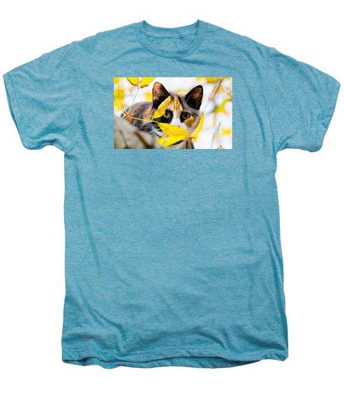 Cat On The Prowl Men's Premium T-Shirt by Jonny D