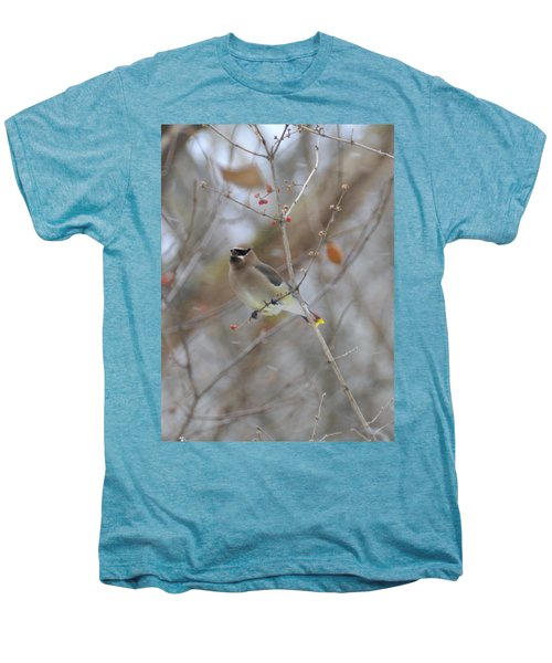 Cedar Wax Wing 2 Men's Premium T-Shirt by David Arment