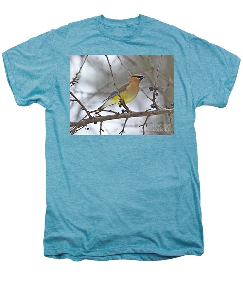 Cedar Wax Wing-2 Men's Premium T-Shirt by Robert Pearson