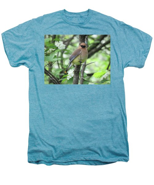 Cedar Wax Wing Men's Premium T-Shirt by Alison Gimpel