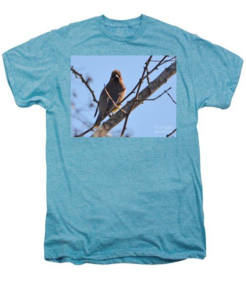 Cedar Wax Wing On The Lookout Men's Premium T-Shirt by Barbara Dalton