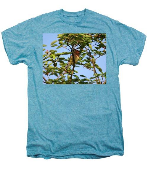 Cedar Waxwing Men's Premium T-Shirt