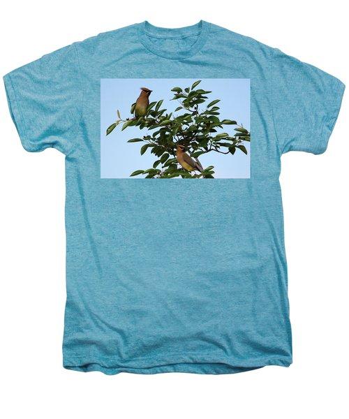 Cedar Waxwing Pair Men's Premium T-Shirt