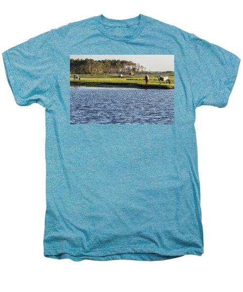 Chincoteague Ponies On Assateague Island Men's Premium T-Shirt