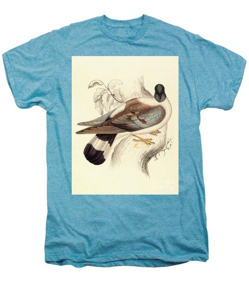 Columba Leuconota, Snow Pigeon Men's Premium T-Shirt by Elizabeth Gould