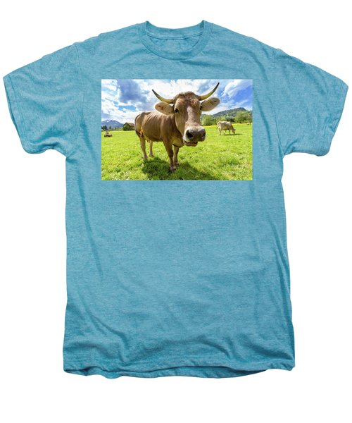 Men's Premium T-Shirt featuring the photograph Cow In Meadow by MGL Meiklejohn Graphics Licensing