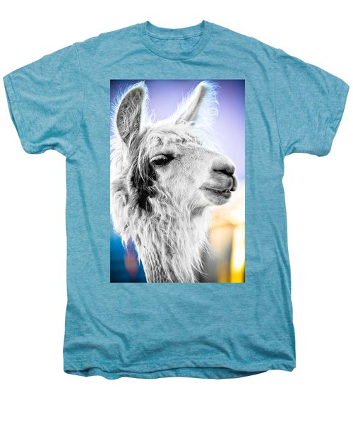 Dirtbag Llama Men's Premium T-Shirt by TC Morgan