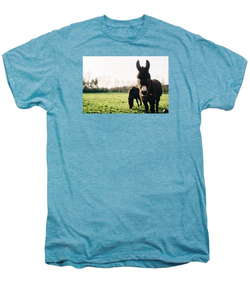 Donkey And Pony Men's Premium T-Shirt by Pati Photography