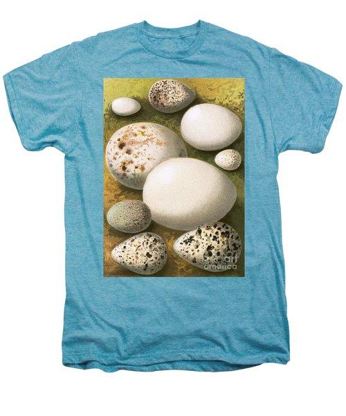 Eggs Men's Premium T-Shirt