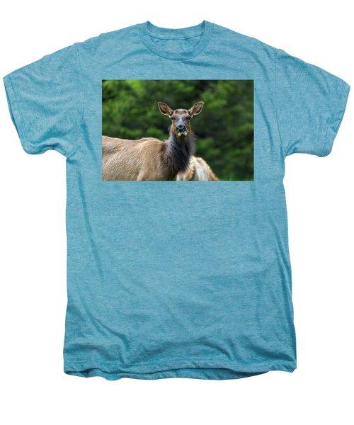 Elk Staring Closeup Portrait Men's Premium T-Shirt