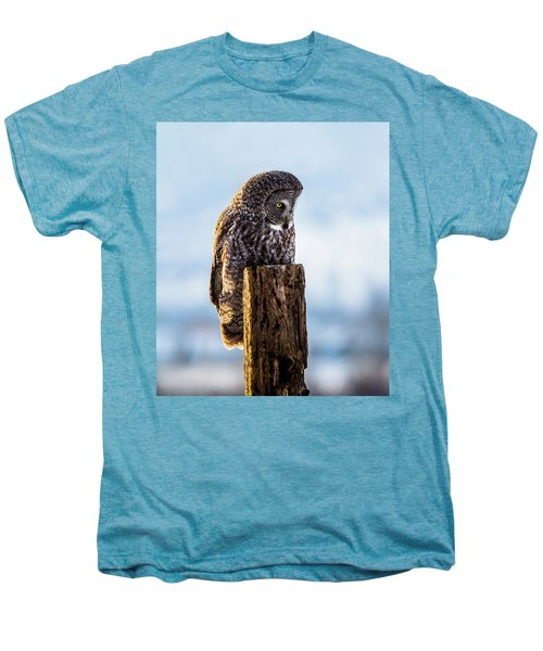 Eye On The Prize - Great Gray Owl Men's Premium T-Shirt
