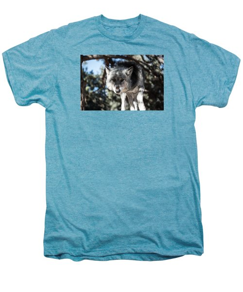 Eyes On The Prize Men's Premium T-Shirt