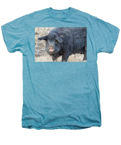 Men's Premium T-Shirt featuring the photograph Female Hog by James BO Insogna