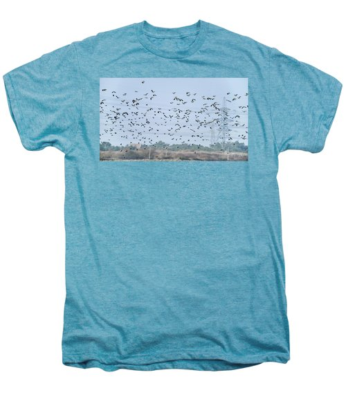 Flock Of Beautiful Migratory Lapwing Birds In Clear Winter Sky Men's Premium T-Shirt