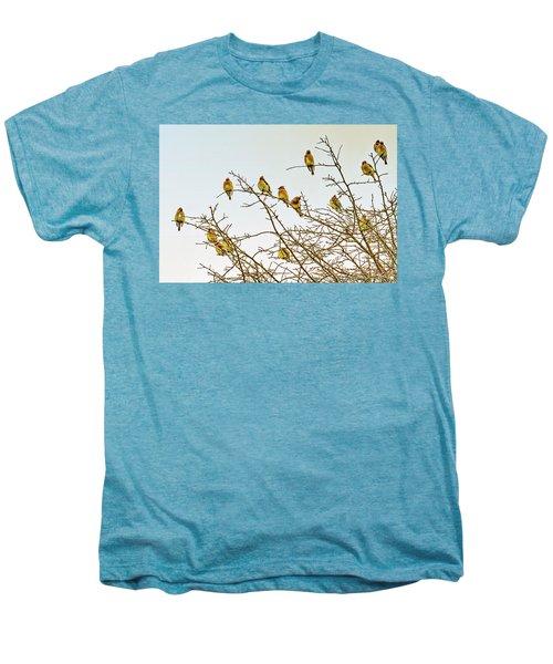Flock Of Cedar Waxwings  Men's Premium T-Shirt by Geraldine Scull