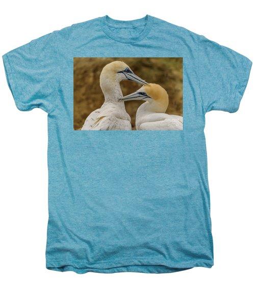Gannets 4 Men's Premium T-Shirt by Werner Padarin