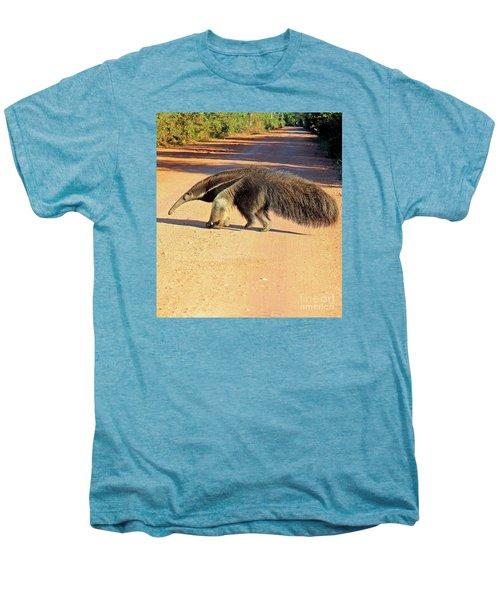 Giant Anteater Crosses The Transpantaneira Highway In Brazil Men's Premium T-Shirt by Nareeta Martin