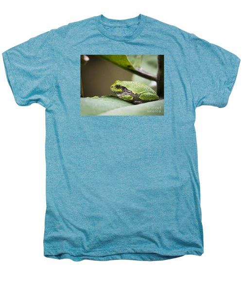 Men's Premium T-Shirt featuring the photograph Gray Tree Frog - North American Tree Frog by Ricky L Jones